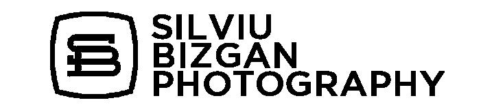 Silviu Bizgan